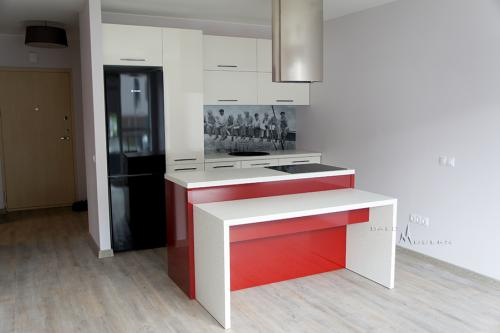 modernios virtuves 18