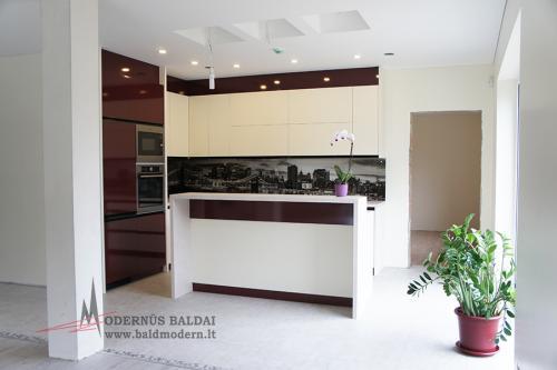 modernios virtuves 25