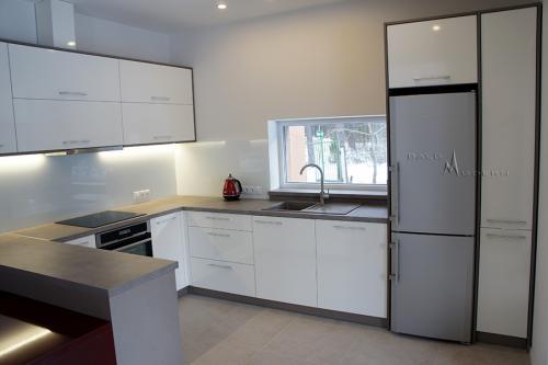 Modernios virtuvės 13