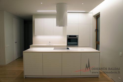 Modernios virtuvės 1