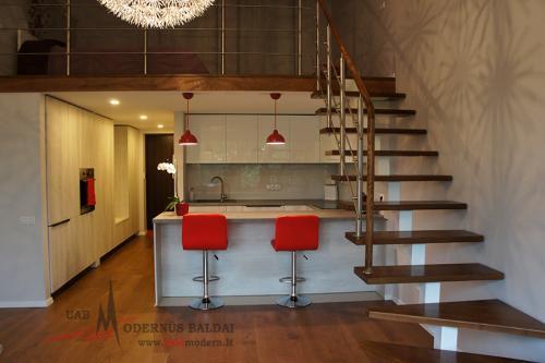 Modernios virtuvės 3