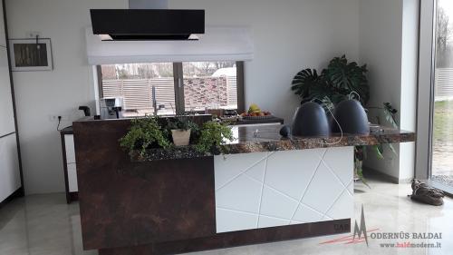 Modernios virtuvės 5