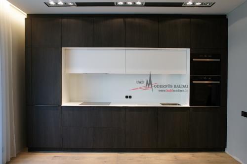 Modernios virtuvės 8